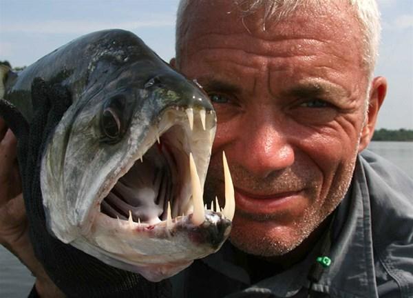 "Jeremy Wade - ""thủy quái"" khổng lồ"